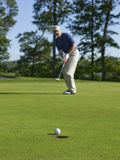 Golfer sinks putt on green. Defocused golfer sinks putt on green Royalty Free Stock Photography