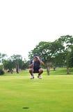 Golfer studies green for putt Royalty Free Stock Photos