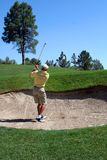 Golfer successfully hitting golf ball out of a sand trap. Ball is clearly visible as is flag Stock Photos