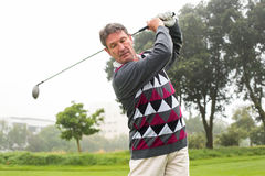 Golfer swinging his club on the course. On a foggy day at the golf course Royalty Free Stock Photo