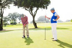 Golfer swinging his club with friend. At the golf course Royalty Free Stock Photography