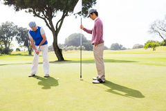 Golfer swinging his club with friend. At the golf course Royalty Free Stock Photo