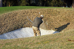 Golfer takes deep bunker shot. Royalty Free Stock Photo
