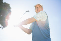 Golfer taking a shot and smiling Royalty Free Stock Photography