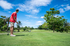 Golfer tee off. Golfer looking fairway before tee off Royalty Free Stock Image