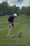 Golfer Teeing Off. With coruse on the backgroung Royalty Free Stock Photos
