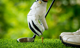 Golfer teeing off. Golfer preparing golf ball for teeing off Royalty Free Stock Image