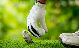 Golfer teeing off. Golfer preparing golf ball for teeing off Stock Photo