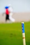Golfer walking on the course. In the background Stock Photo