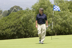 Golfer walking off green. Handsome male golfer walking off green royalty free stock images