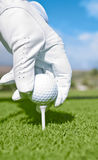 Golfer With White Glove Places Golf Ball On Tee Royalty Free Stock Image