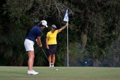 Golfers Royalty Free Stock Photos