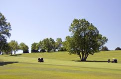 Golfers And Carts On Fairway Stock Photography