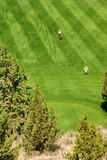 Golfers on bright green fairway stock photography
