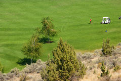 Golfers on bright green fairway Royalty Free Stock Photography