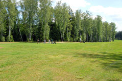 GOLFERS AT COUNTRY CLUB Royalty Free Stock Images