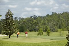 Golfers on Florida Golf Green Stock Image