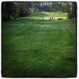 Golfers on golf course. Bright and lush green golf course fairway with golfers and bunker in background. Thick, tall trees along fairway. Blue sky and clouds Stock Images