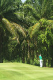 Golfers on golf course in Thailand Stock Image
