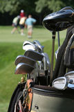 Golfers and Golfbag. Set of golf clubs in bag with a group of golfers putting on green blurred in background. Vertical framing Royalty Free Stock Photography