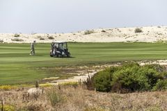 Golfers on 17 mile drive in california. Coastal highway Royalty Free Stock Photos
