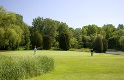 Golfers Playing The Green. Two senior golfers playing at a Wisconsin golf course Royalty Free Stock Images