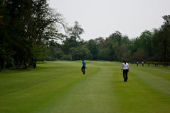 Golfers at practice Royalty Free Stock Photography