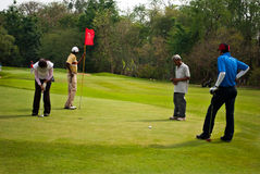 Golfers at practice Royalty Free Stock Image