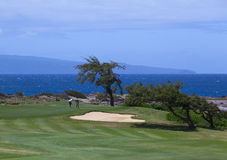 Golfers putting beside ocean on Kapalua royalty free stock photo