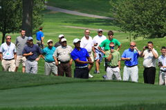 Golfeur de Tiger Woods Photographie stock libre de droits