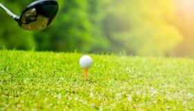 Golfeur frappant la boule de golf sur la pièce en t outre de la zone dans le terrain de golf image libre de droits