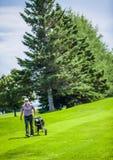 Golfeur mûr sur un terrain de golf Images stock