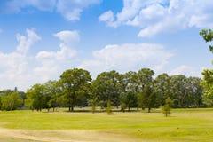 Golffält Royaltyfria Bilder