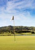 Golffält Arkivfoton