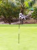 Golffält på den Mauritius ön Arkivfoto