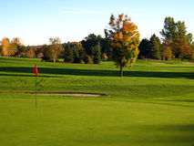 Golfgericht Stockfotografie