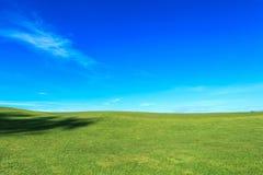 Golfgräsplan Arkivfoto