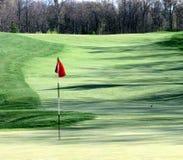 Golfgrün Lizenzfreie Stockbilder