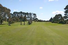 Golfgrün Lizenzfreies Stockfoto
