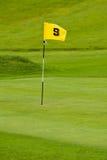 Golfgrün stockbilder