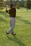 golfgranskningswing royaltyfri foto