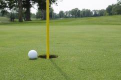 Golfgras Royalty-vrije Stock Afbeeldingen