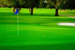 golfgreen Royaltyfri Fotografi