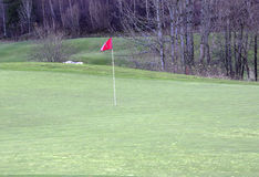 Golfgreen con la bandiera, golfgreen il flagga del med Fotografia Stock