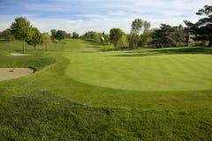 Golfgreen i morgonsolljus arkivfoto