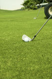 Golfing. Ball on the green background Stock Photos