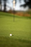 Golfing Royalty Free Stock Photos