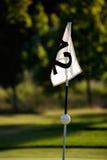 Golfing Immagine Stock