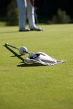 Golfing. Golf green with white flag, shallow focus Royalty Free Stock Images