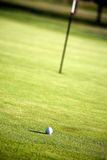 Golfing. Golf green with one golf ball, shallow focus Royalty Free Stock Photography